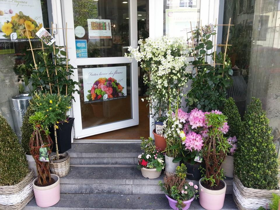 Fleuriste plante ext rieur h fleur et moi valenciennes - Porte plante exterieur ...