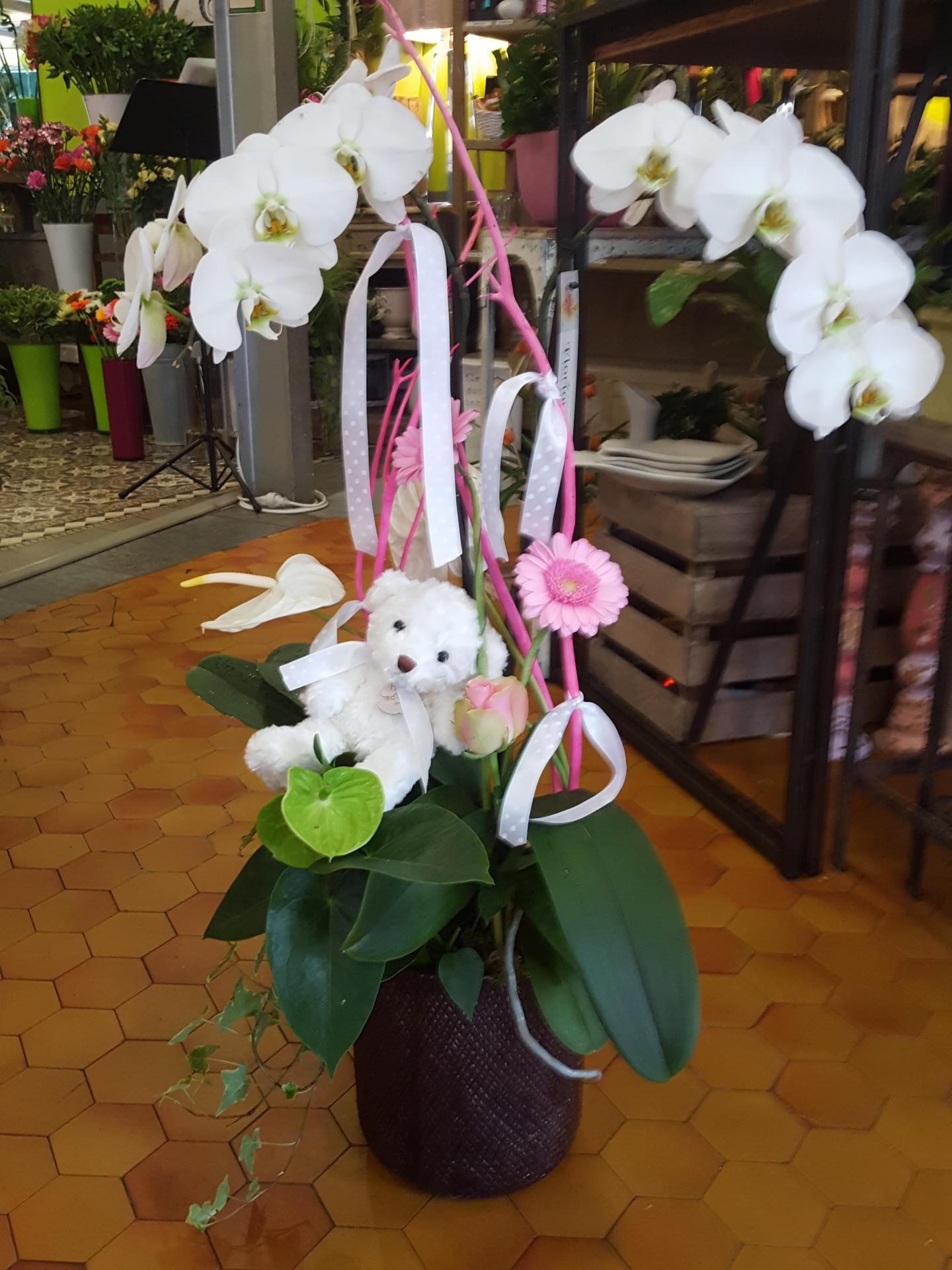 naissance valenciennes fleurs fleuriste hé fleur et moi le Quesnoy Saint amant Denain