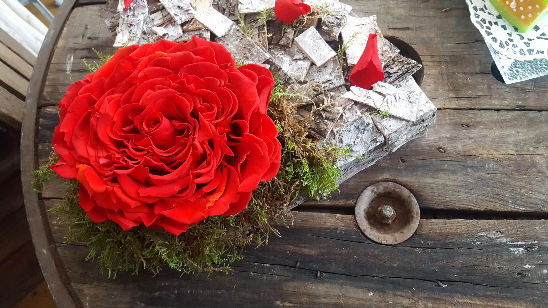 Fête des mères Coeur rose eternelle glamelia  Hé fleur et moi fleuriste valenciennes fleurs Denain Saint Amand Le Quesnoy