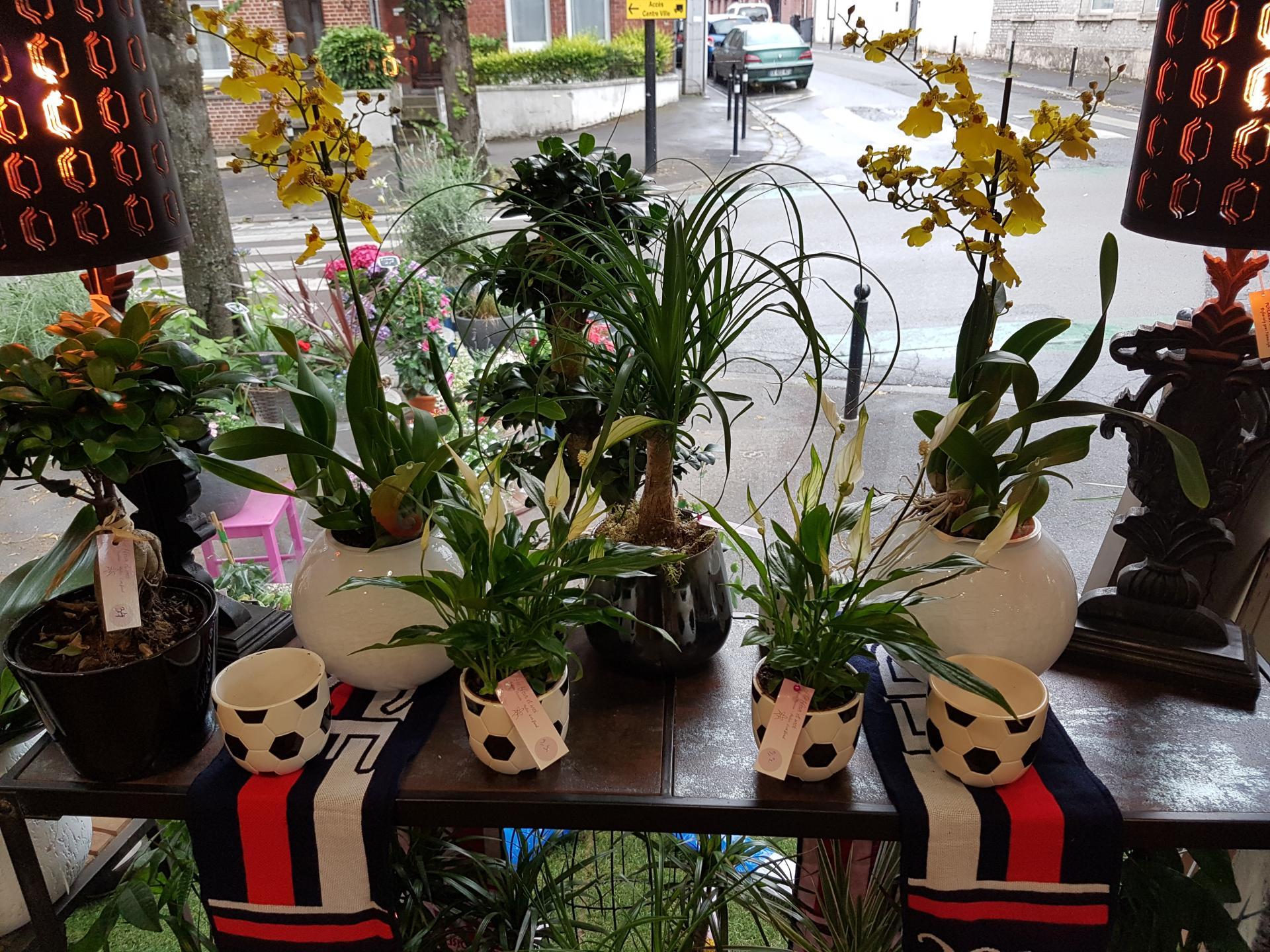 Coupe du monde foot fleuriste de Valenciennes idée cadeau