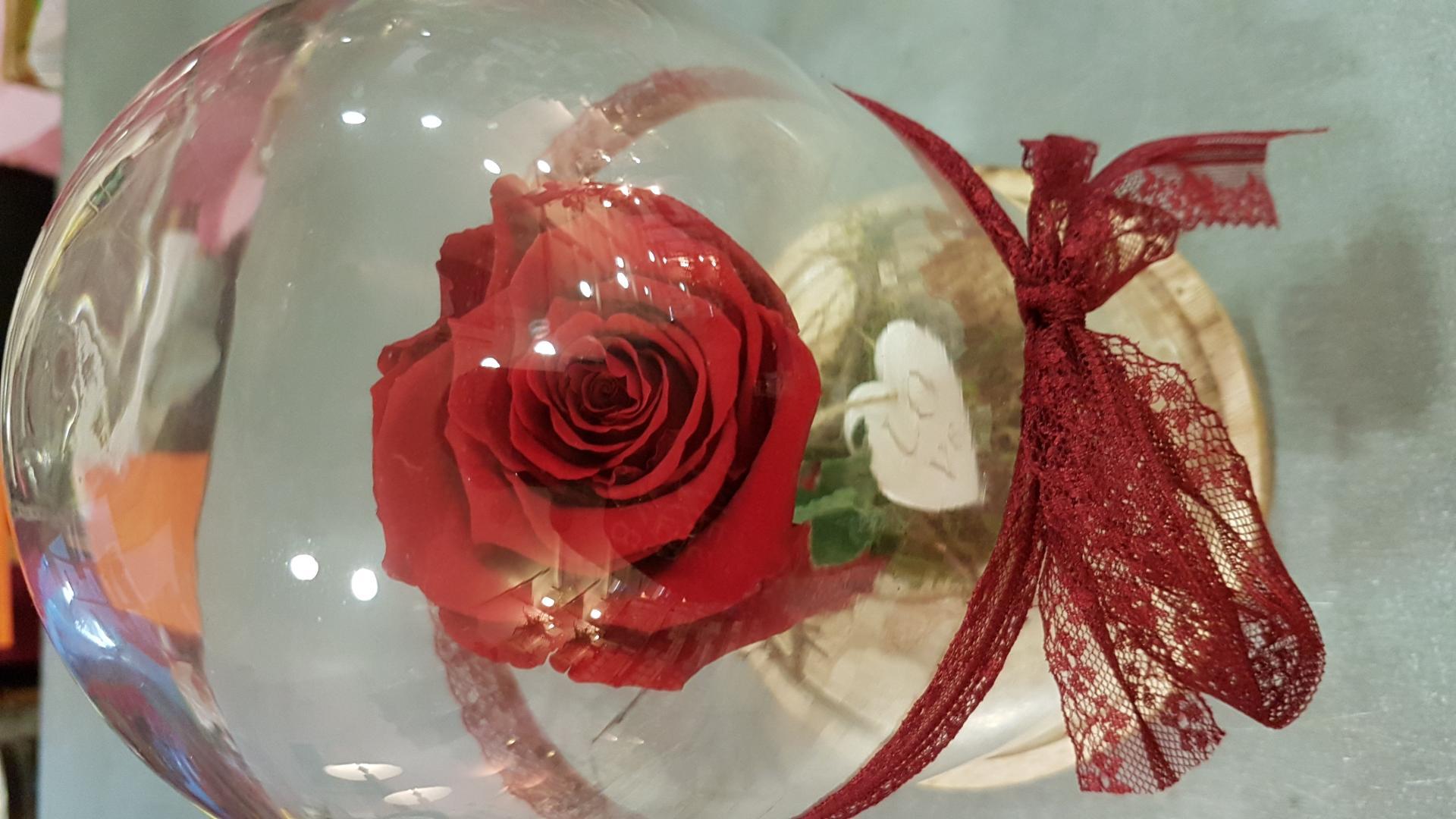 Rose Eternelle Chez He Fleur Et Moi Fleuriste Valenciennes