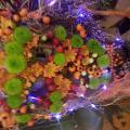 Atelier art floral Halloween Fleuriste Hé Fleur et moi Valenciennes