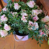 Bouquet douceur de roses