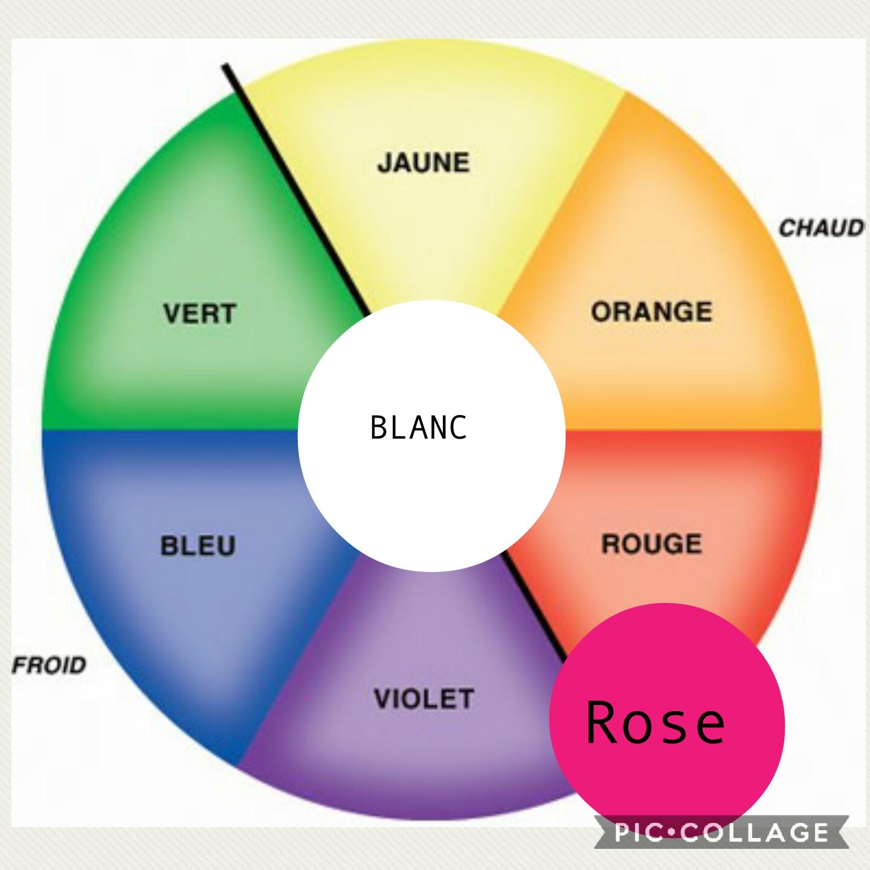 Cercle chromatique Hé fleur et moi fleuriste Valenciennes