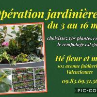 fleuriste valenciennes jardinière