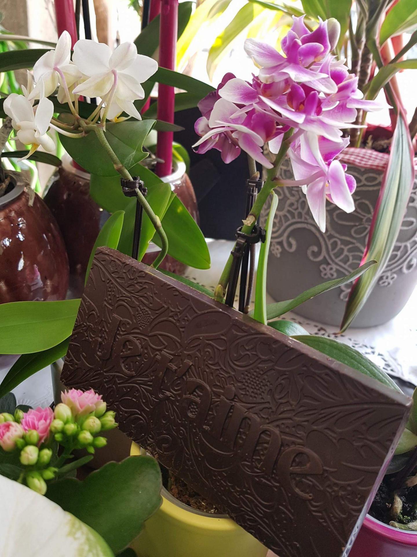 Pour la fête des mères votre fleuriste de Valenciennes Hé fleur et moi c'est associé avec un chocolatier français pour accompagner votre bouquet de fleurs d'un chocolat de qualité