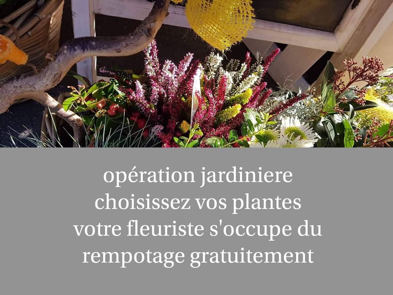 Operation jardiniere d automne avec Hé fleur et moi fleuriste de Valenciennes