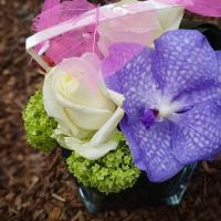 Composition de fleurs pavé de verre 18€ Hé fleur et moi fleuriste de Valenciennes