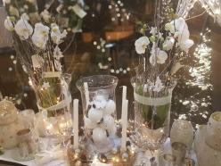 Orchidée Noël Hé fleur et moi fleuriste de Valenciennes