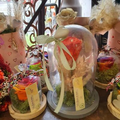 Rose éternelle sous cloche chez hé fleur et moi fleuriste Valenciennes