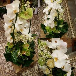 Dernier hommage coussin conique moderne tout en blanc by Hé fleur et moi #fleuriste #valenciennes #phalenopsis #deuil #fleur #dernierhommage #lequesnoy #saintamand #denain