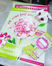 Orchidée jeu concours Hé fleur et moi fleuriste de Valenciennes